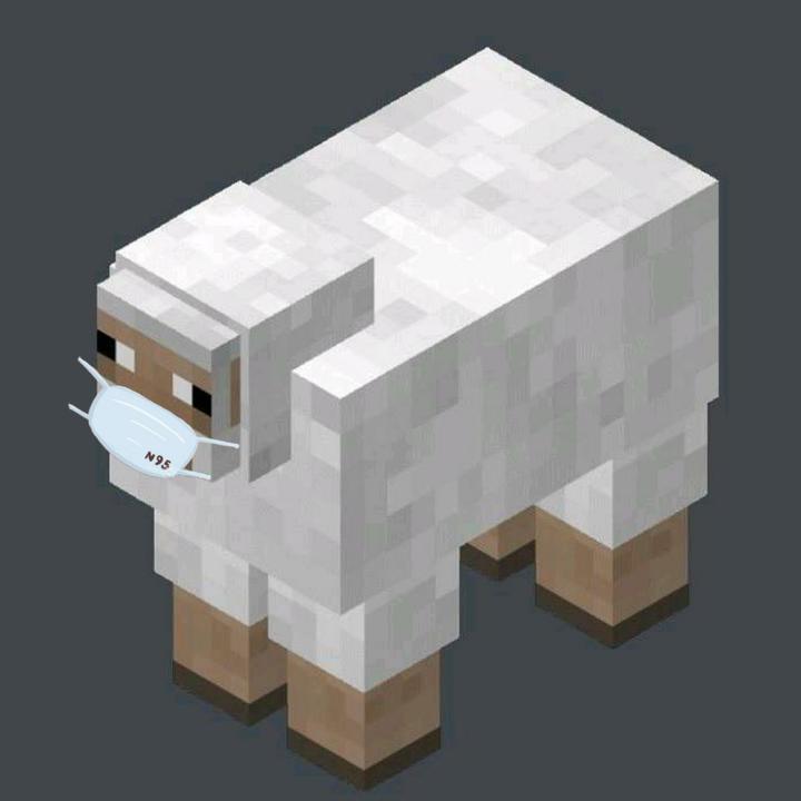 我的世界 小羊 反迷你 回来啦